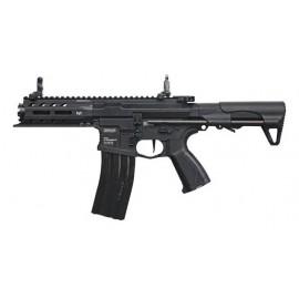 AEG ARP 556 [G&G]