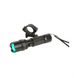 Flashlight rechargeable green led (12V+220V+ring 25.4mm+cable USB)